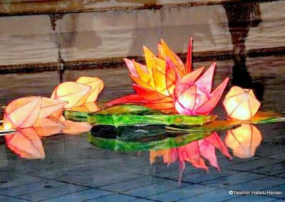 Indian Lotus Flower lanterns-1